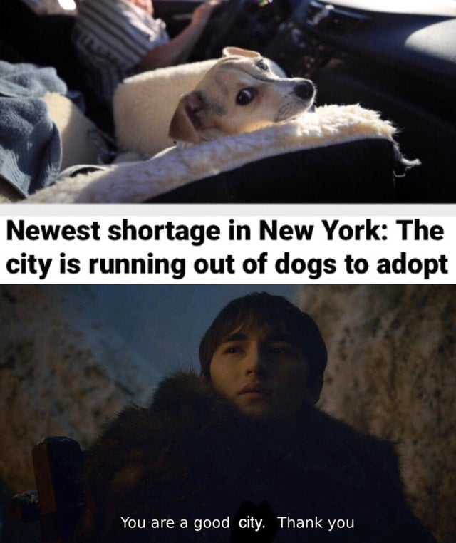 Finally some good news in 2020
