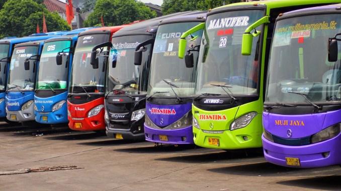 nama bis yang memakai nama orang