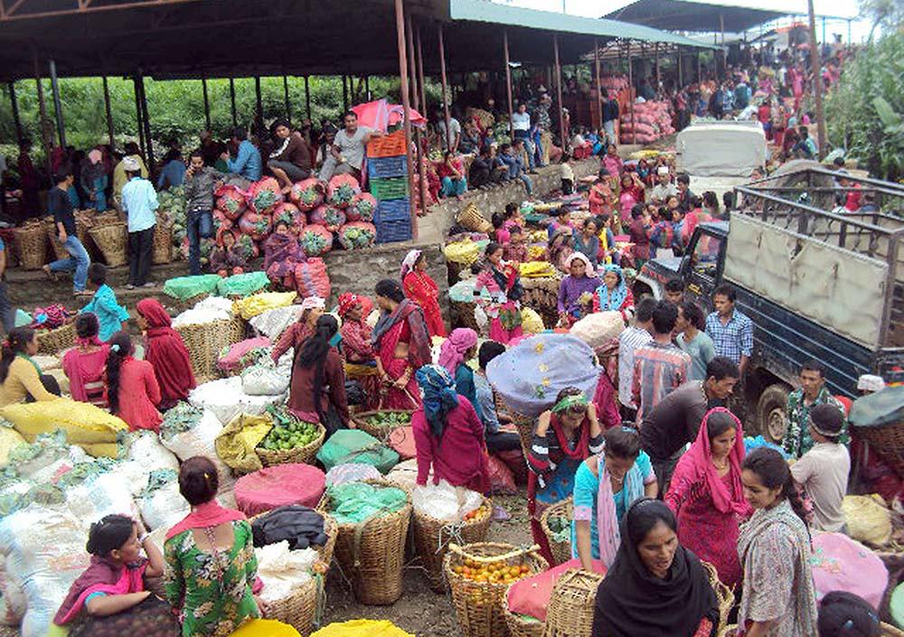 सल्यान कपुरकोटका किसानले ३ महिनामा ६ करोडको तरकारी बिक्री गरे