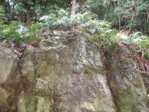 soganoyashiro3