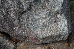 斑れい岩のアップ、結晶やペグマタイトも発見できることも