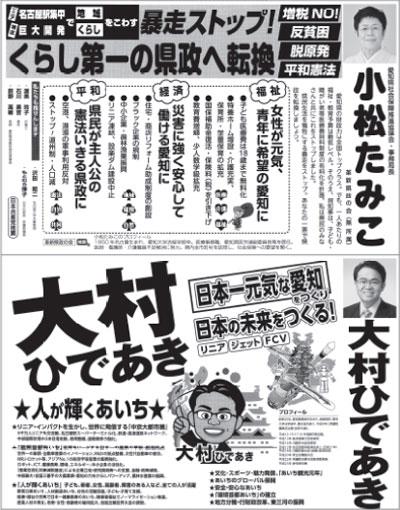 第18回愛知県知事選挙
