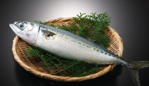 熟成魚?福井県郷土料理「へしこ」にそっくり、秋田の魚のぬか漬け!