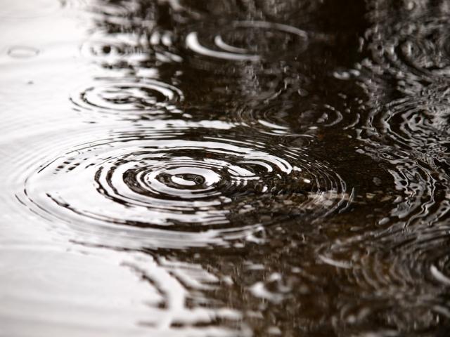 体調不良になりやすい梅雨、体調管理も万全に楽しく過ごすには。