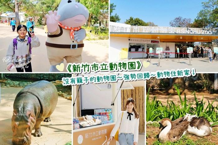 親子景點【新竹市立動物園】沒有籠子的動物園~全新回歸更好逛!(交通、停車場、門票)