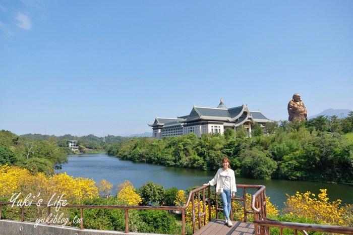 新竹景點【峨眉湖環湖步道】湖畔遠眺彌勒佛×黃花風鈴木拍照點在這裡!