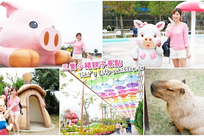嘉義民雄景點【三隻小豬觀光農場】20多種動物遊樂園、繪本世界親子一日遊!