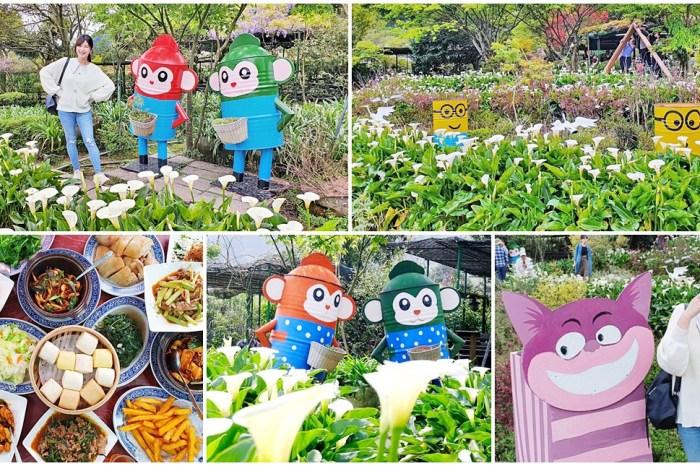 2021竹子湖海芋季》苗榜海芋園,賞海芋、吃土雞~推薦拍海芋來這一家~