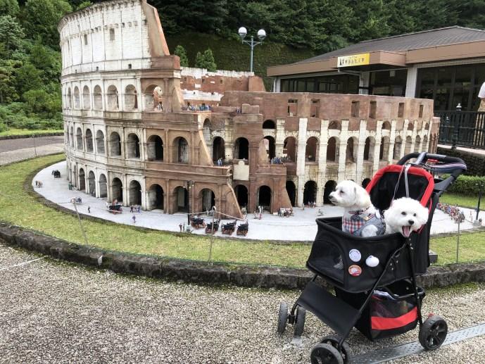 【東武ワールドスクウェア】で犬と一緒に世界を回ろう【日光】 コロッセオ