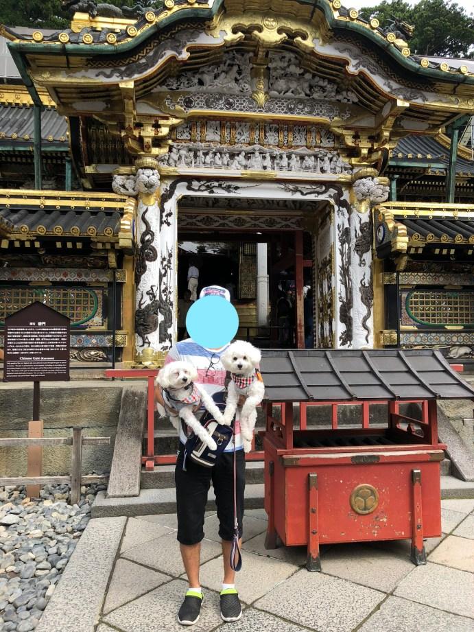 【日光東照宮】犬と行ける1度は行くべき世界文化遺産 唐門