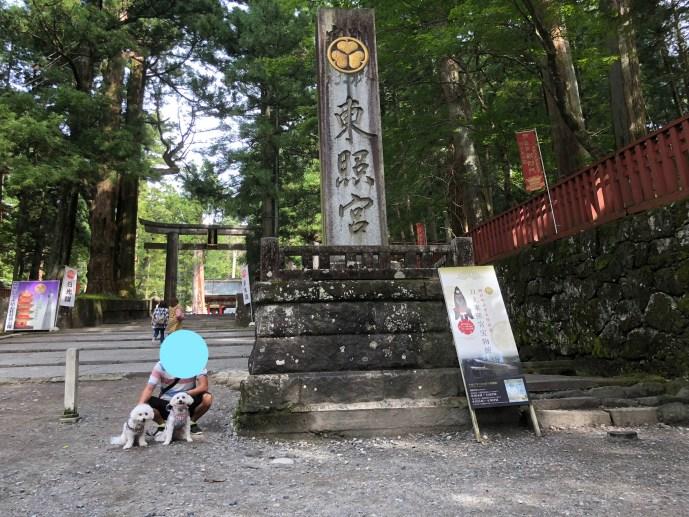 【日光東照宮】犬と行ける1度は行くべき世界文化遺産 石鳥居