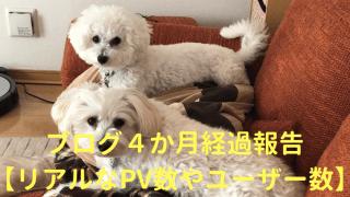 ブログ4か月経過報告【リアルなPV数やユーザー数】 アイキャッチ
