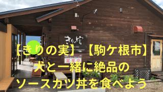 【きりの実】【駒ケ根市】犬と一緒に絶品のソースカツ丼を食べよう アイキャッチ