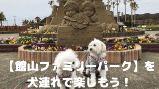 【館山ファミリーパーク】を 犬連れで楽しもう! アイキャッチ