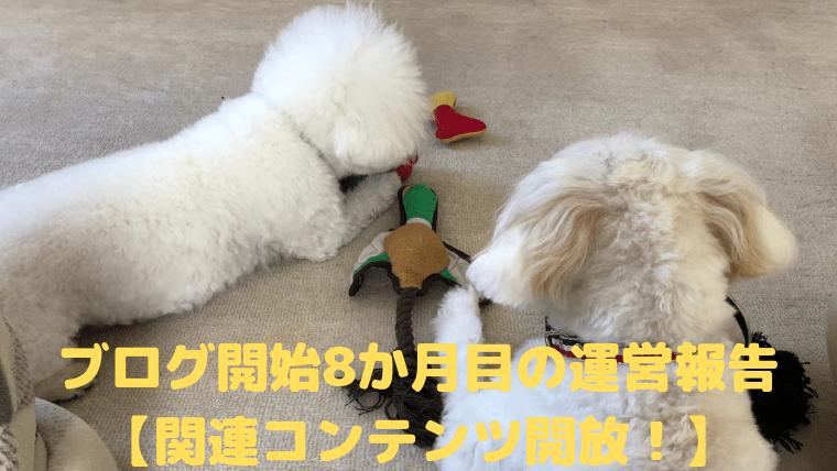 ブログ開始8か月目の運営報告 【関連コンテンツ開放!】 アイキャッチ