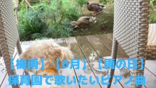 【梅雨】【6月】【雨の日】保育園で歌いたいピアノ曲 アイキャッチ