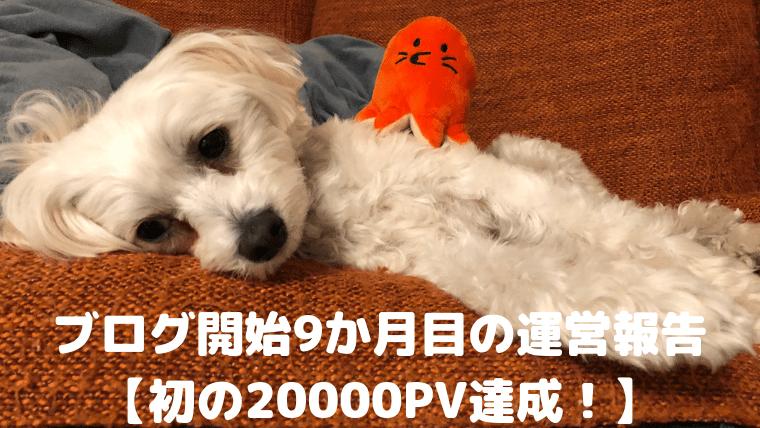 ブログ開始9か月目の運営報告 【初の20000PV達成!】 アイキャッチ