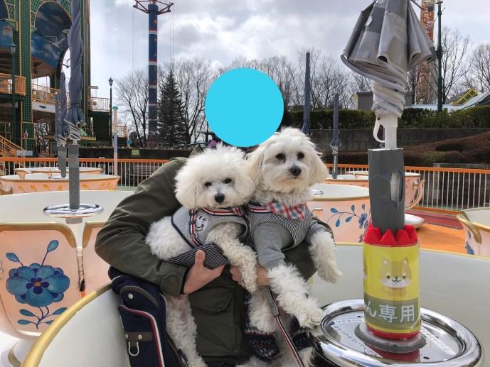【那須ハイランドパーク】犬と乗り物であそべる遊園地の楽しみ方 カップ内