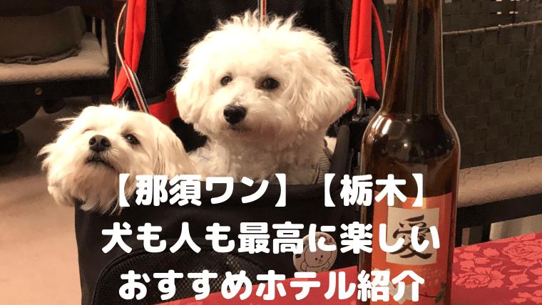 【那須ワン】【栃木】 犬も人も最高に楽しい おすすめホテル紹介 アイキャッチ