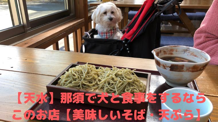 【天水】那須で犬と食事をするなら このお店【美味しいそば・天ぷら】 アイキャッチ