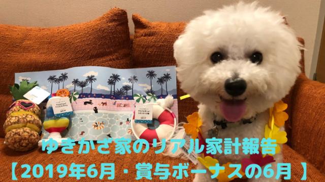 ゆきかざ家のリアル家計報告 【2019年6月・賞与ボーナスの6月 】 アイキャッチ