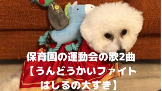 保育園の運動会の歌2曲 【うんどうかいファイト はしるの大すき】 アイキャッチ