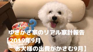ゆきかざ家のリアル家計報告 【2019年9月 お犬様の出費がかさむ9月】 アイキャッチ