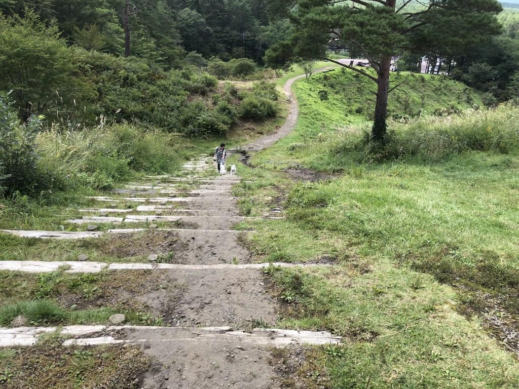 【浅間牧場】犬と一緒にソフトクリームと絶景を堪能しよう【軽井沢】 斜面