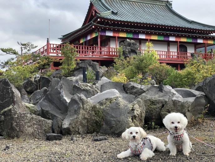 【鬼押出し園】軽井沢に広がる溶岩の芸術を犬と一緒に楽しもう 観音堂