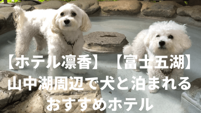 【ホテル凛香】【富士五湖】 山中湖周辺で犬と泊まれる おすすめホテル アイキャッチ