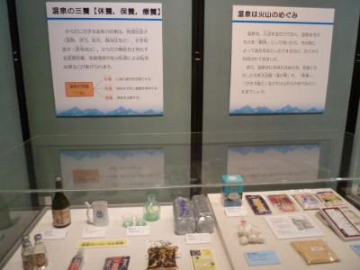 Exhibition72-volcano-14