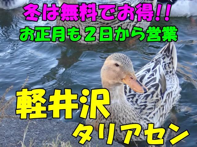 軽井沢タリアセン☆口コミ。冬は無料でお得。年末年始も2日から営業