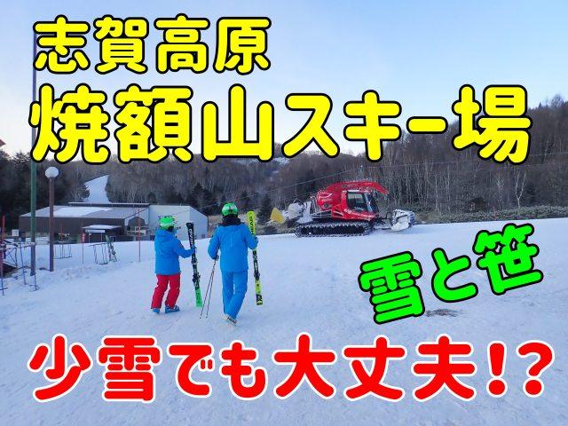 志賀高原焼額山スキー場。少雪でも大丈夫!?~雪と笹の森、そして草原~