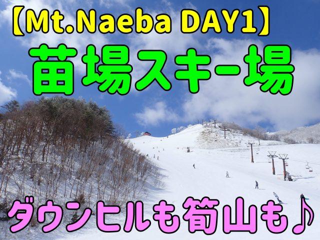 【Mt.Naeba】DAY1苗場スキー場編。ダウンヒルも筍山も♪