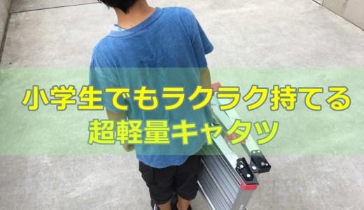 【長谷川工業DRX2.0-0752レビュー】超軽量&省スペース脚立【滑り止め付き】