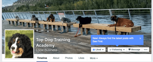 Top Dog Training Academy's Facebook page.