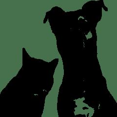 Yukon Animal Rescue Network Working To Improve The Future Of Animals In All Yukon Communities