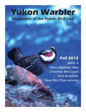 Yukon Warbler Fall 2012