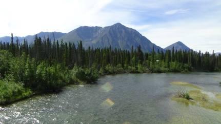 rivière à saumons