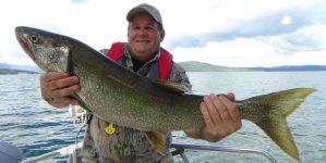 truite grise du lac Aishihik