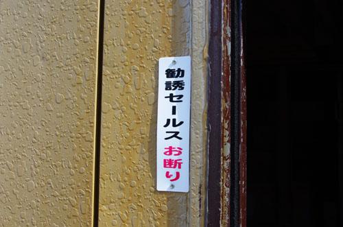 IMGP9846.jpg