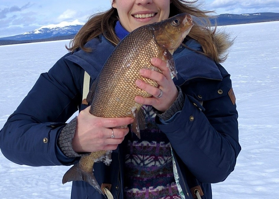Ice Fishing at Little Atlin Lake
