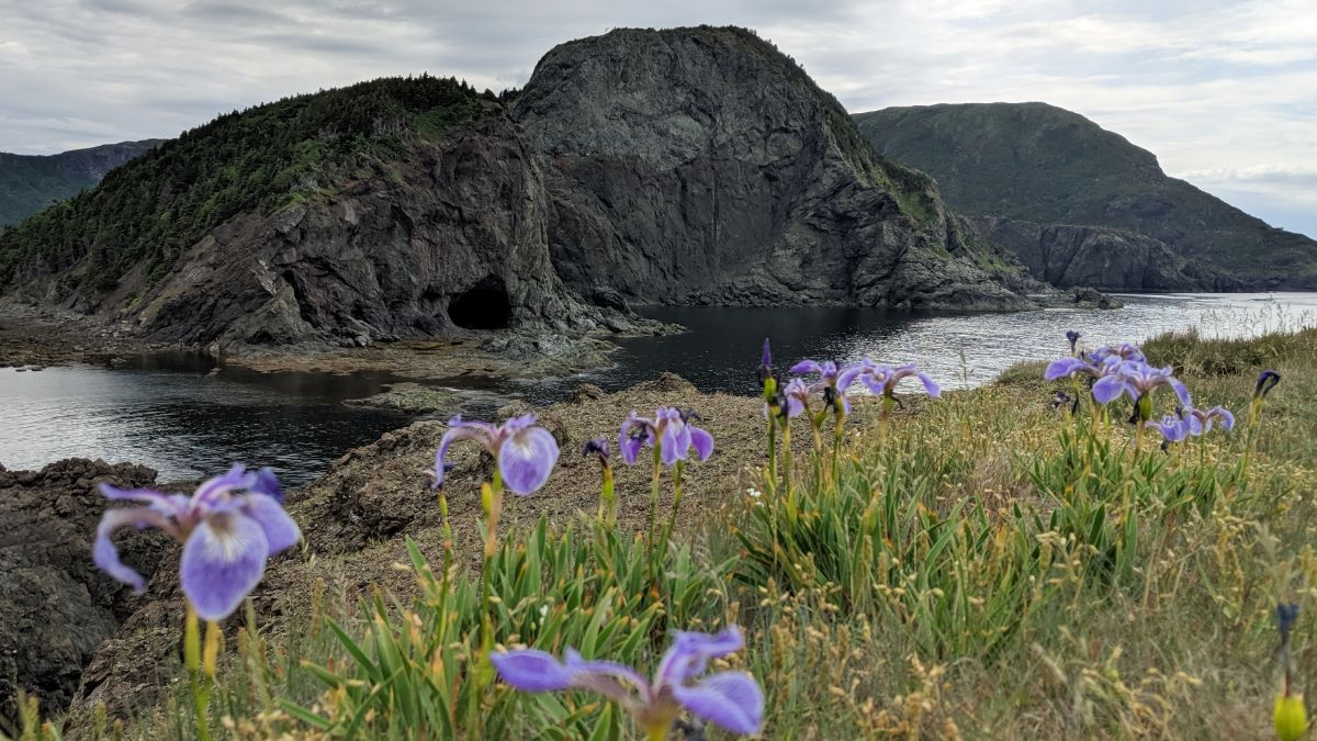 Hiking in Bottle Cove Newfoundland - http://yula.ca