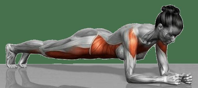 спорт | планки | похудение