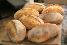 Delicious sourdough loaves