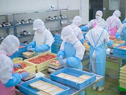 食品工場の床