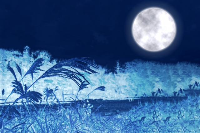 月が美しい風景