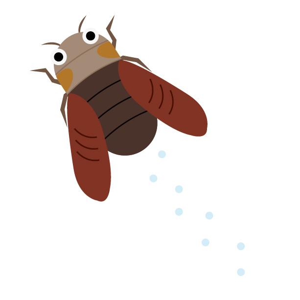 蝉が飛んでる