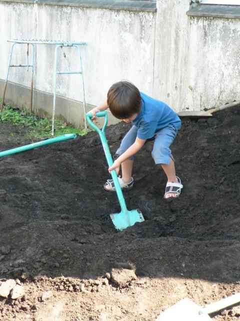 土に穴を掘る