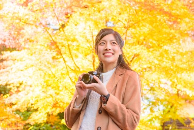 紅葉の風景を写真に撮る